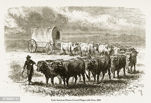 Beautifully Illustrated Antique Engraved Victorian Illustration of Early American Pioneer Covered Wagon with Oxen Victorian Engraving, 1868. Source: Original edition from my own archives. Copyright has expired on this artwork. Digitally restored.