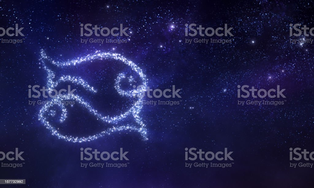 Pisces zodiac sign vector art illustration