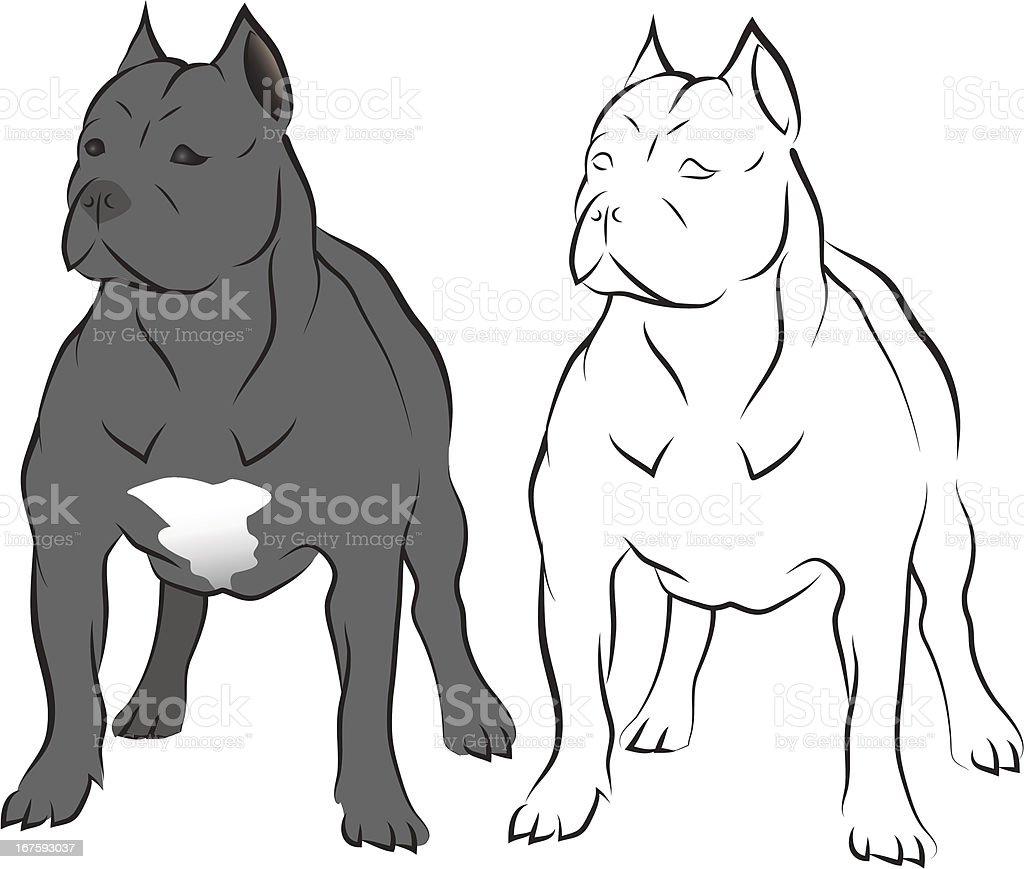 Pit bull. vector art illustration