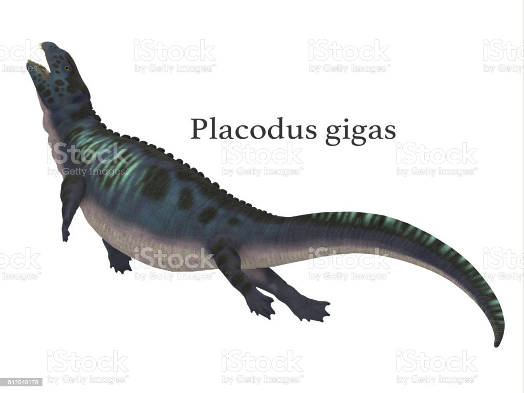 Placodus Dinosaur with Font vector art illustration