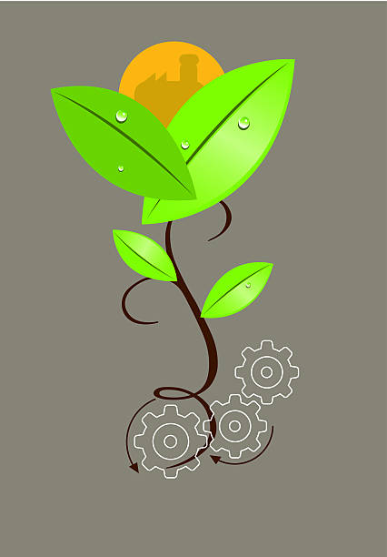 plante vector art illustration