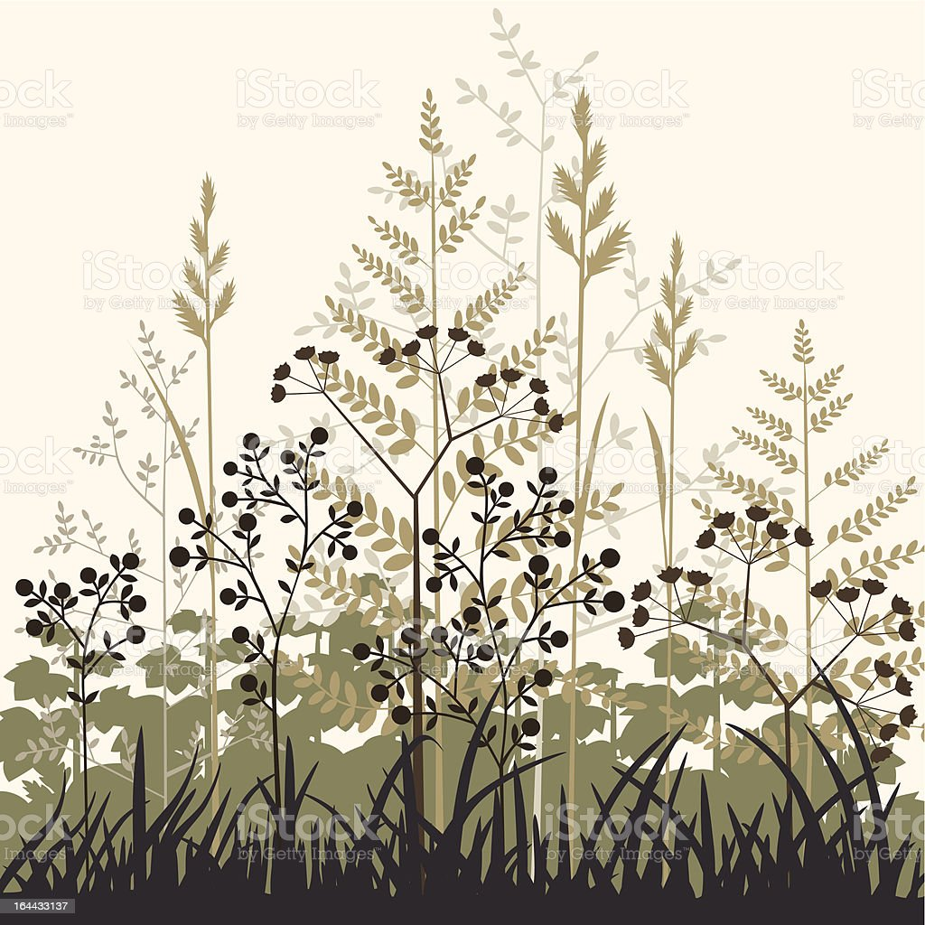 Plants and grasses background vector art illustration