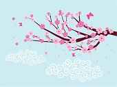 Vector of Plum Blossom with blue background.