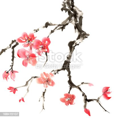 Chinese traditional ink painting of flowers, plum blossom, isolated on white background.