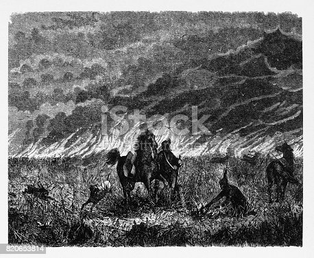Beautifully Illustrated Antique Engraved Victorian Illustration of American Indians and Poineer Starting Wildfire for Hunting Engraving, 1867. Source: Original edition from my own archives. Copyright has expired on this artwork. Digitally restored.