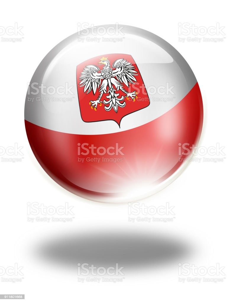 Poland button with polish flag isolated on white vector art illustration