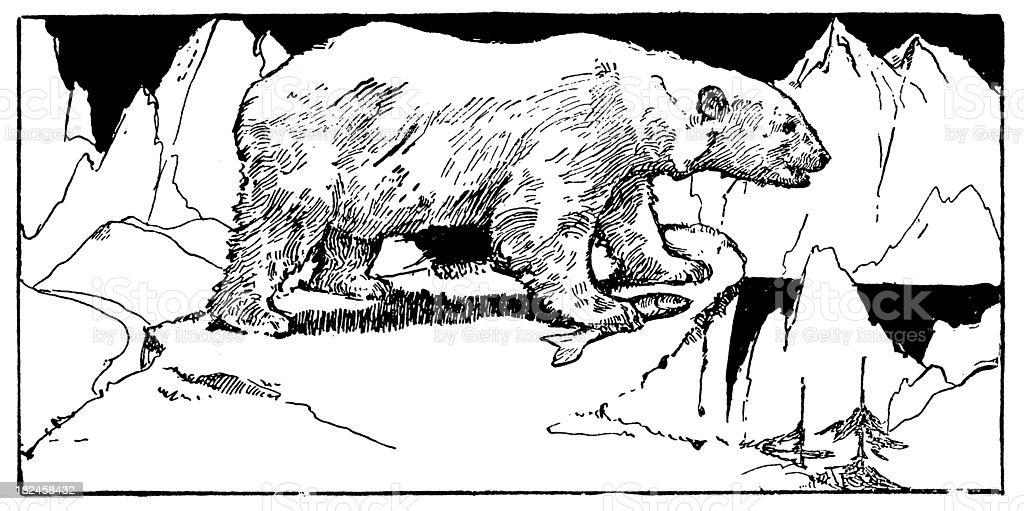 Oso Polar con pescado blanco y negro de grabado ilustración de oso polar con pescado blanco y negro de grabado y más banco de imágenes de américa del norte libre de derechos
