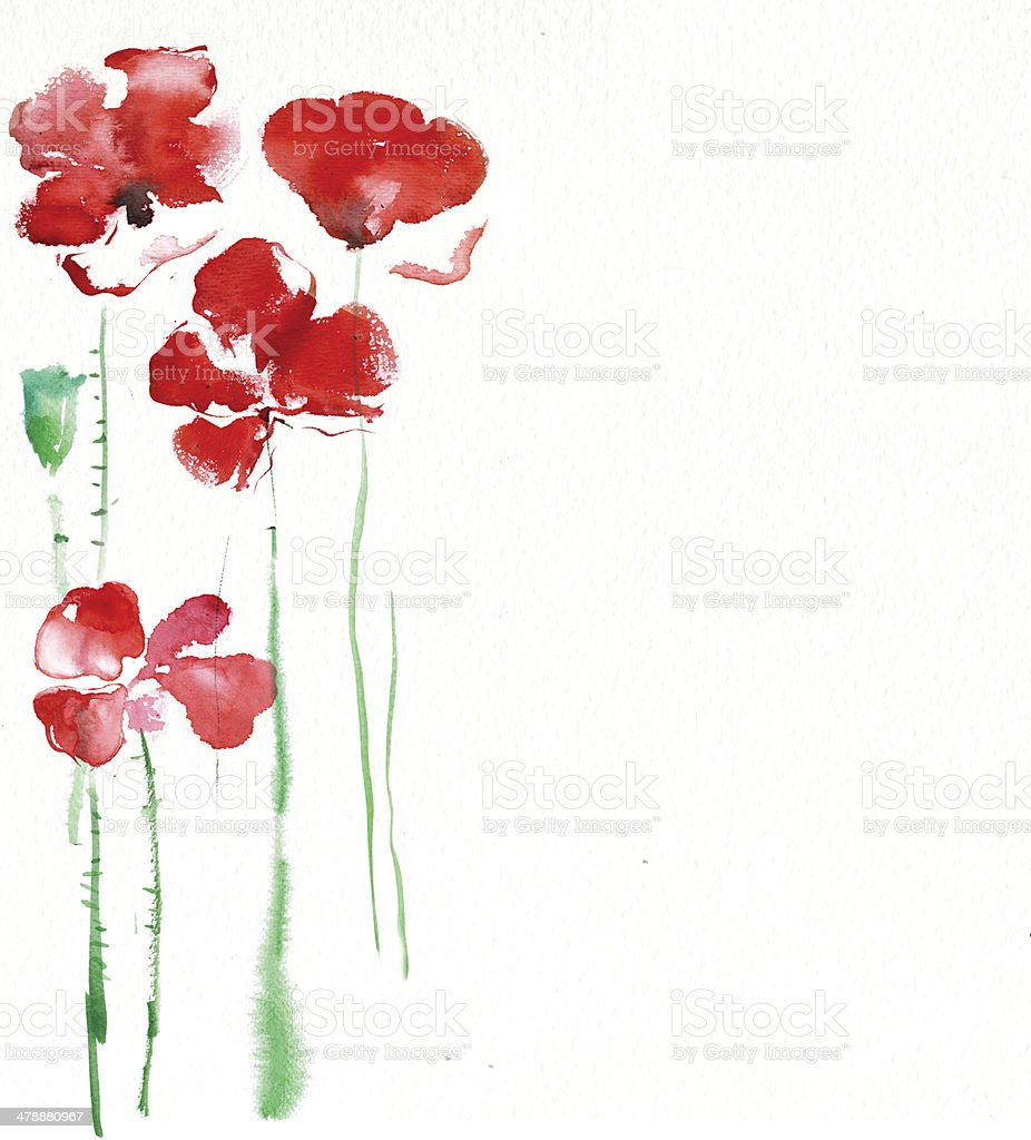 Poppies vector art illustration