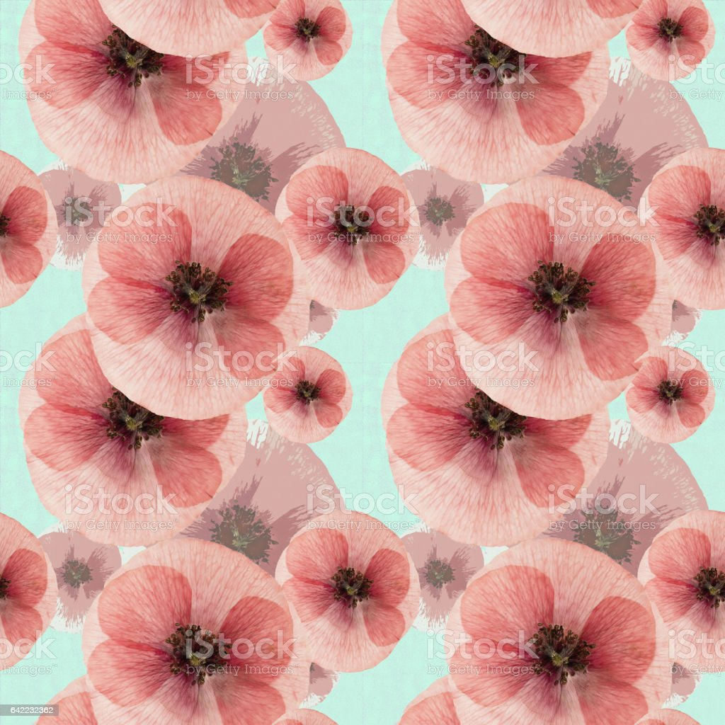 Poppy colorful texture of pressed dry flowers stock vector art poppy colorful texture of pressed dry flowers royalty free poppy colorful texture of mightylinksfo Gallery