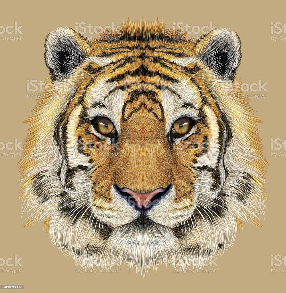Portrait of a Tiger vector art illustration