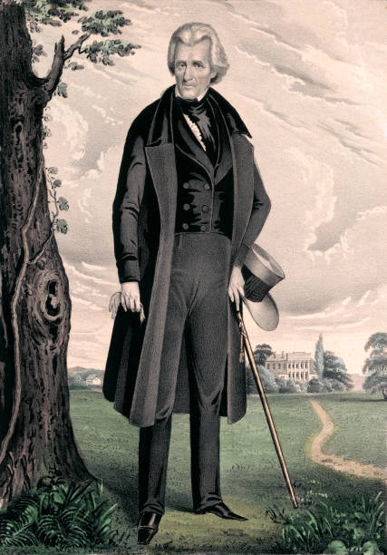 Portrait of Andrew Jackson, 7th United States President Vintage portrait features Andrew Jackson, American soldier and statesman who served as the seventh president of the United States from 1829 to 1837. presidential candidate stock illustrations