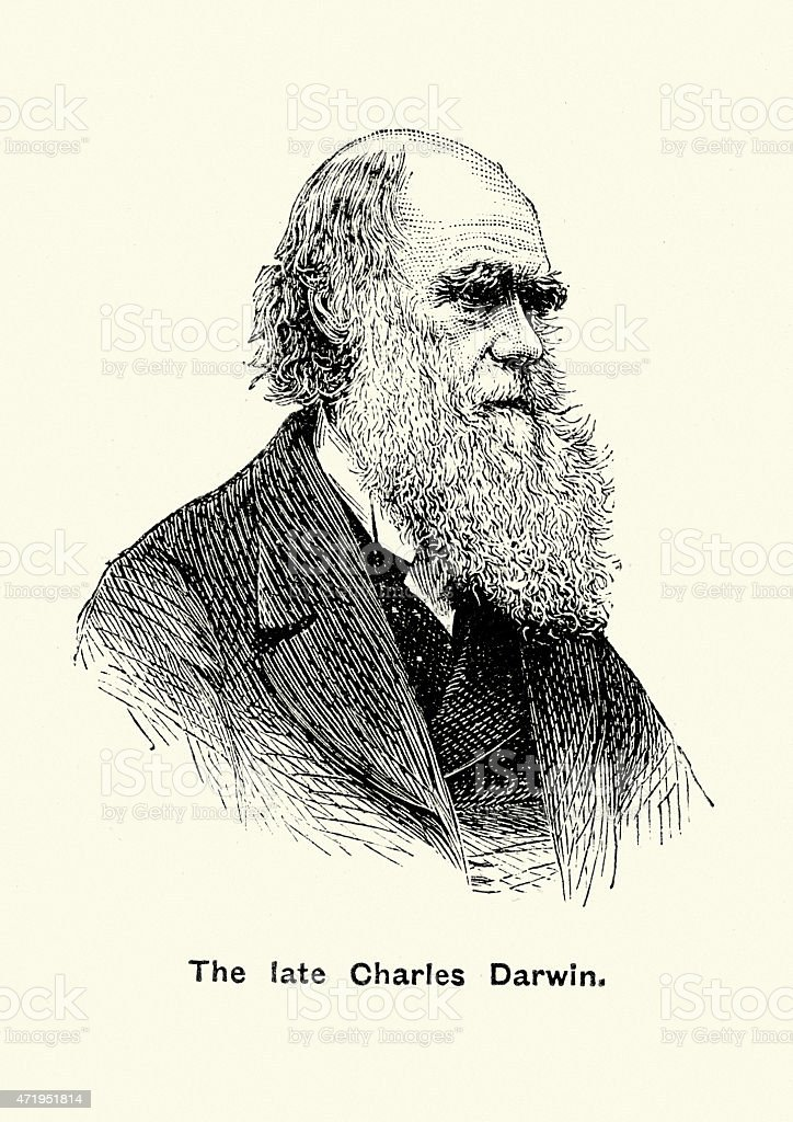 a comparison of the extent of the impact of the studies of charles darwin and sigmund freud For many of us these words are often centred upon the ideas and work of one mansigmund freud images of patterned sofas, cuban cigars, ambiguous ink blots, freudian slips and a penchant for all things sexual flood our minds at the very mention of this infamous characters name.