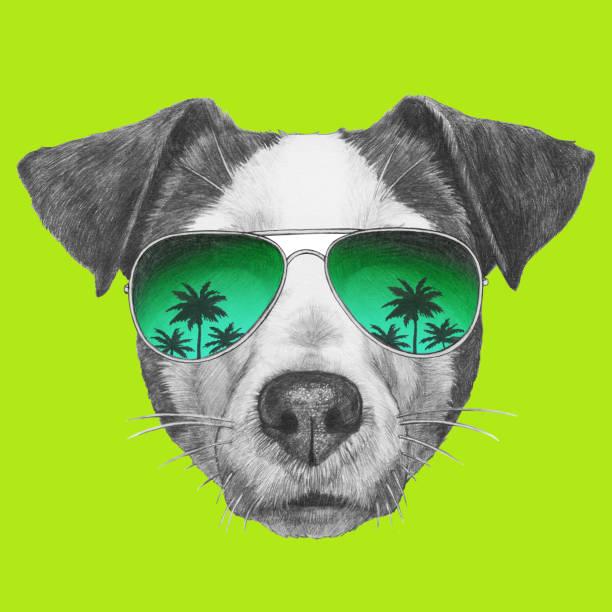 Portrait de Jack Russell avec des lunettes de soleil. Illustration dessinée à la main. - Illustration vectorielle