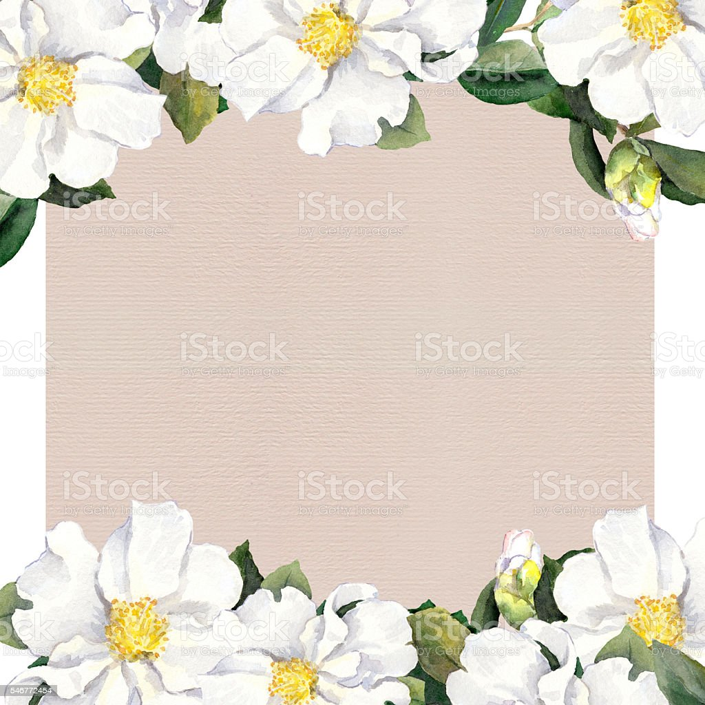 Postcard With Floral Frame White Flowers Watercolor Stock Vector Art