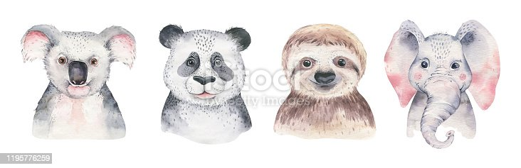 A trendy poster with a koala. Watercolor cartoon koala tropical animal illustration. Jungle exotic summer print.