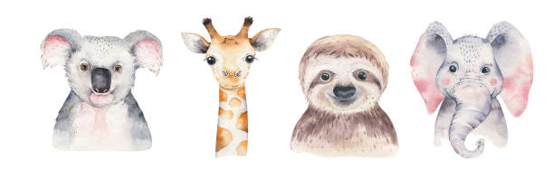 A poster with a baby panda, sloth, giraffe and koala. Watercolor cartoon elephant tropical animal illustration. Jungle exotic summer print. A trendy poster with a koala. Watercolor cartoon koala tropical animal illustration. Jungle exotic summer print. baby animals stock illustrations