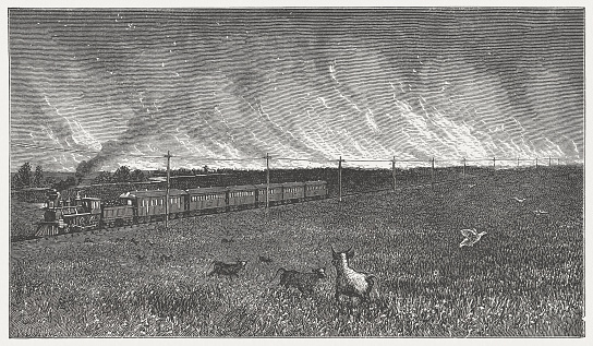 Prairie fire in the Wild West, wood engarving, published in 1880