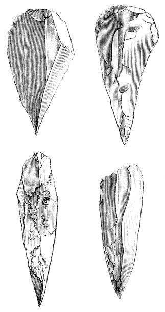 Prehistoric Mousterian Flint Spearheads - 160,000 to 40,000 Years Ago vector art illustration