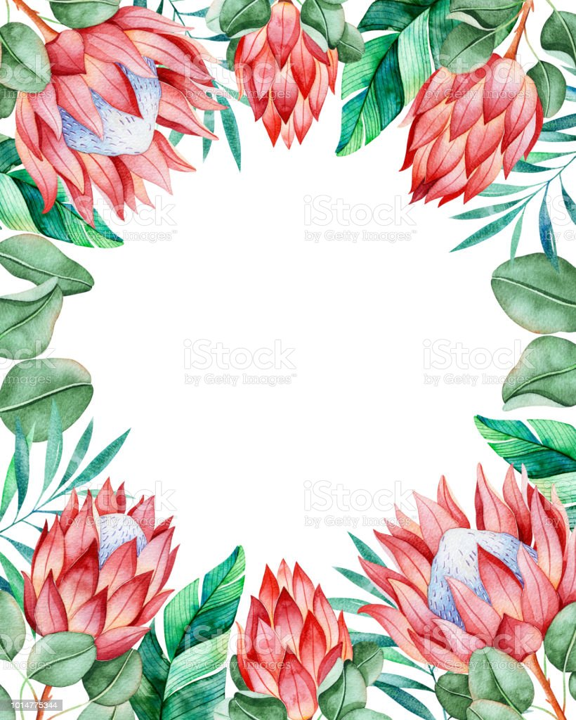 Premade Frame Border With King Protea And Tropical Leaves