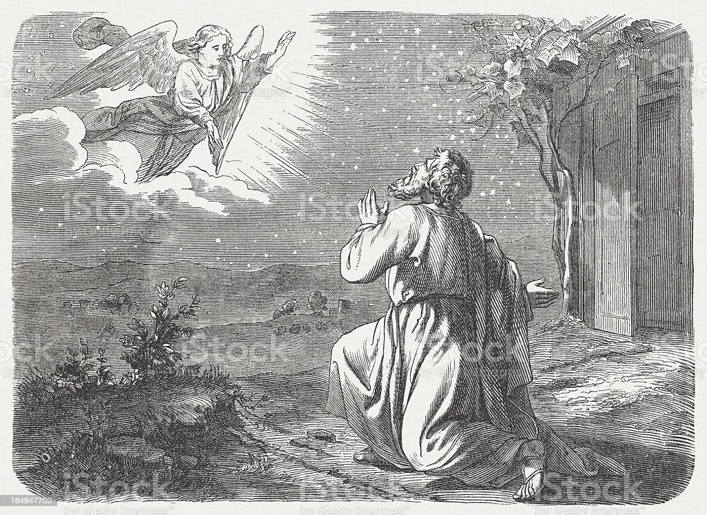Promise to Abram (Genesis 15, 5) vector art illustration