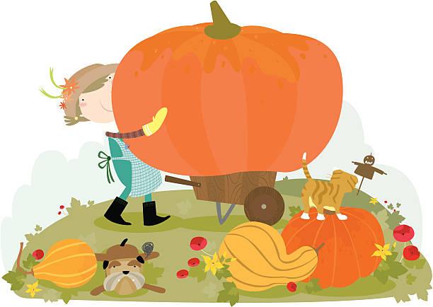 Pumpkin harvest vektorkonstillustration
