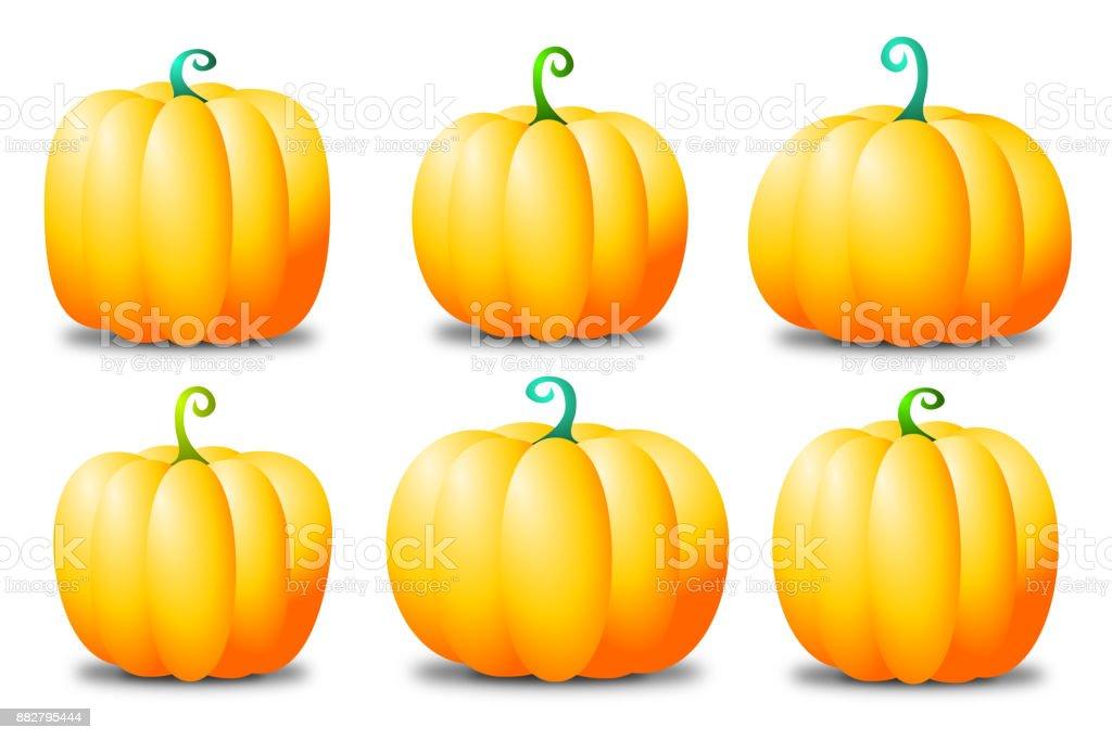 Pumpkins - set vector art illustration