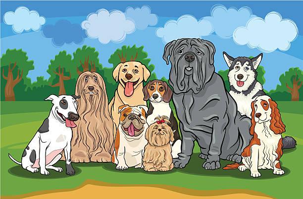 purebred dogs group cartoon illustration vector art illustration