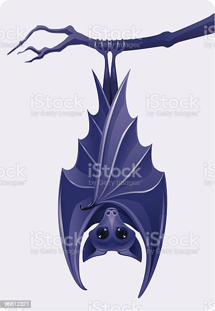 Purple Bat-vektorgrafik och fler bilder på Bild
