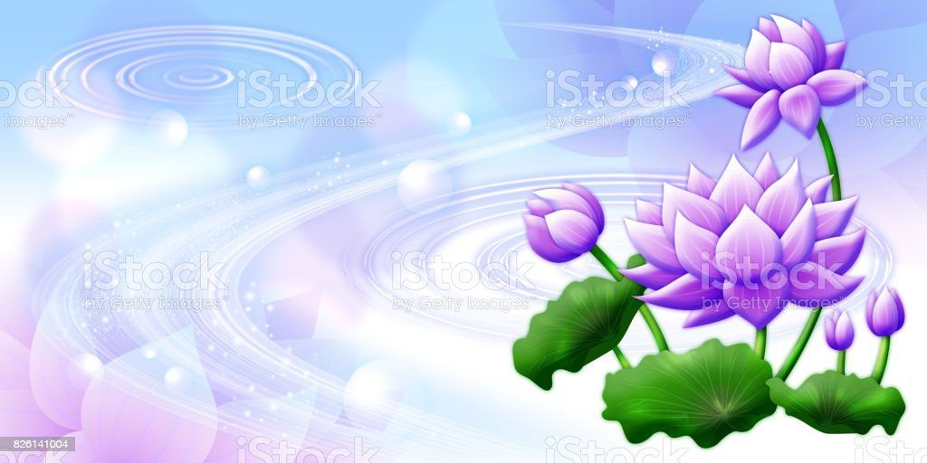 Purple Lotus Flower With White Background Stock Vector Art & More ...