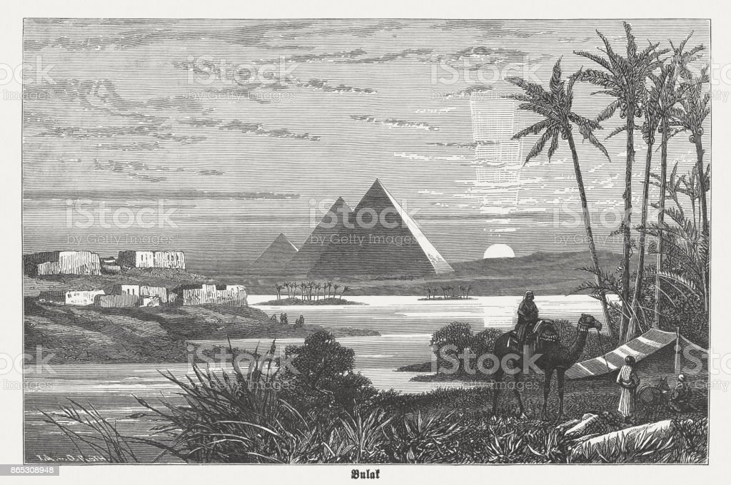 Pyramids of Giza during a Nile flooding, published in 1882 vector art illustration