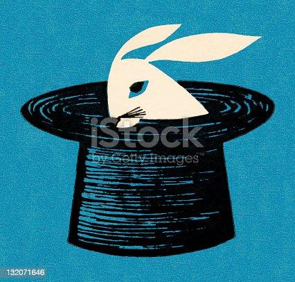 istock Rabbit in Magician's Hat 132071646