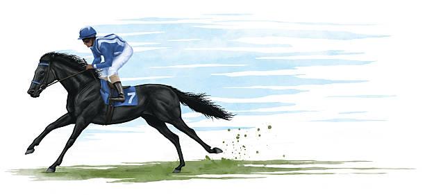 경주마 - horse racing stock illustrations