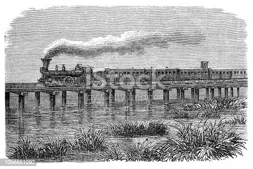Illustration of a Railroad: Train on a pole bridge in South Carolina
