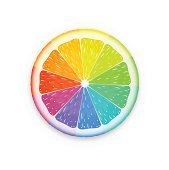 Vector illustration of colorful citrus fruit slice