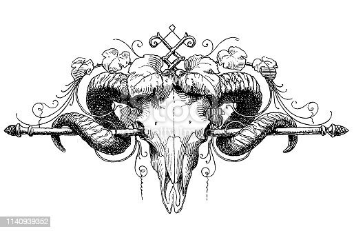 Illustration of a Ram skull page ornament