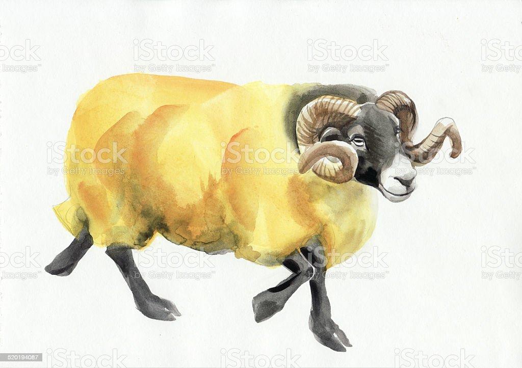Ram watercolor painting vector art illustration