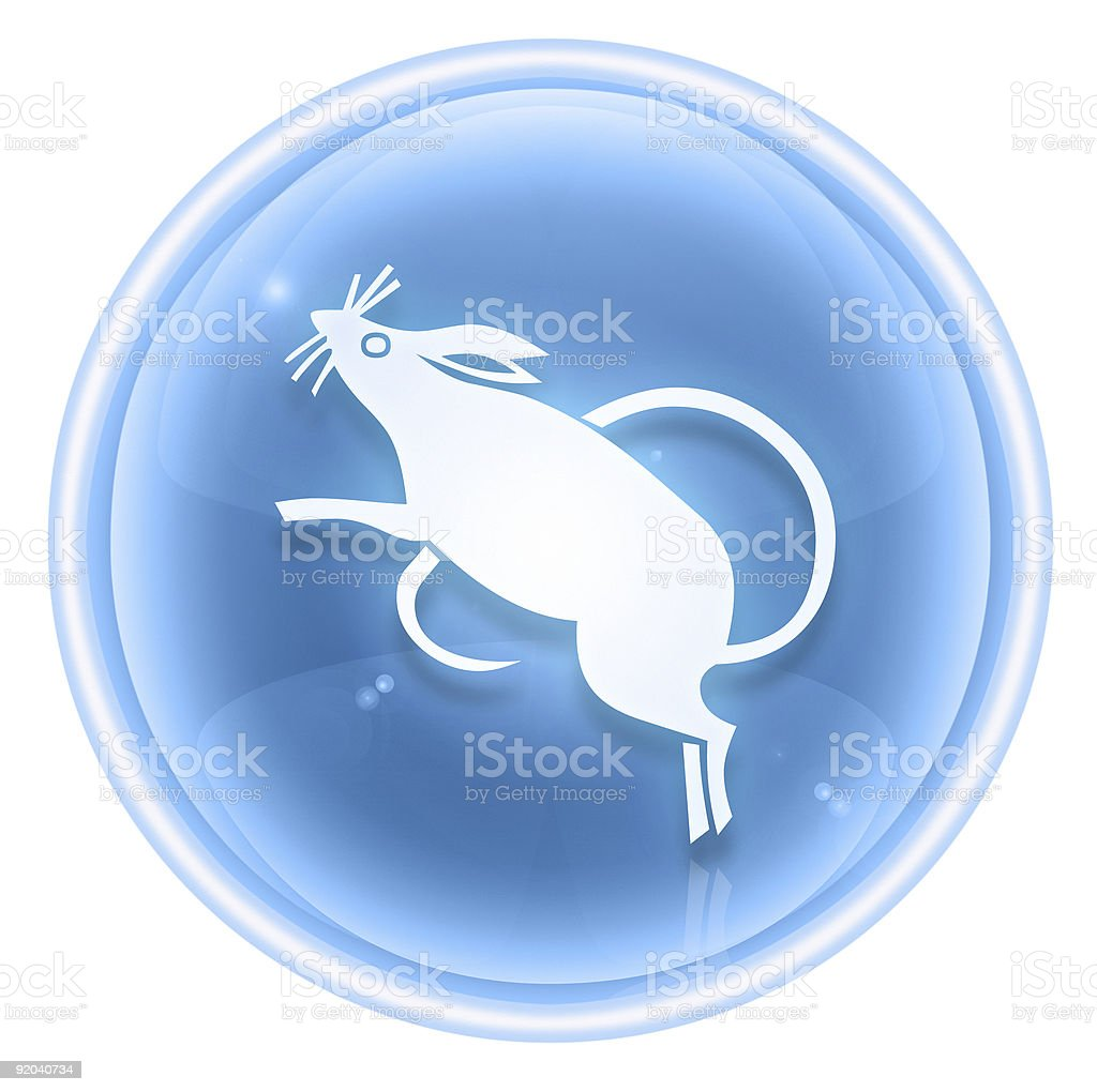 Rat Zodiac icon ice, isolated on white background. royalty-free rat zodiac icon ice isolated on white background stock vector art & more images of asia