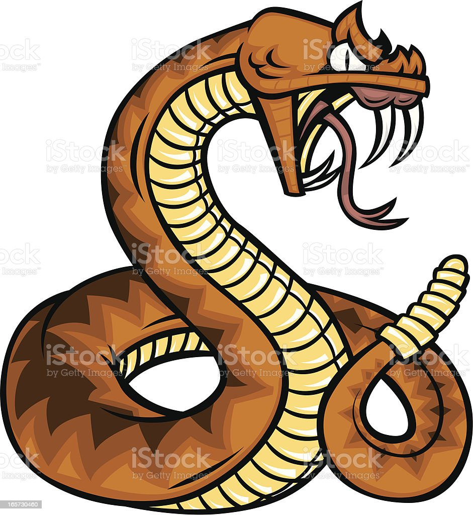 rattlesnake stock vector art more images of animal 165730460 istock rh istockphoto com rattlesnake head clipart rattlesnake clipart free