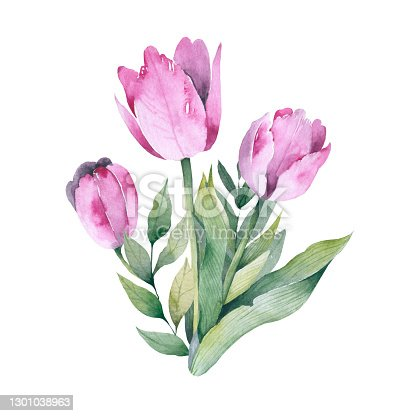istock Realistic tulips set. Not trace. The blank for your design. Pink tulips flowers on white background. 1301038963