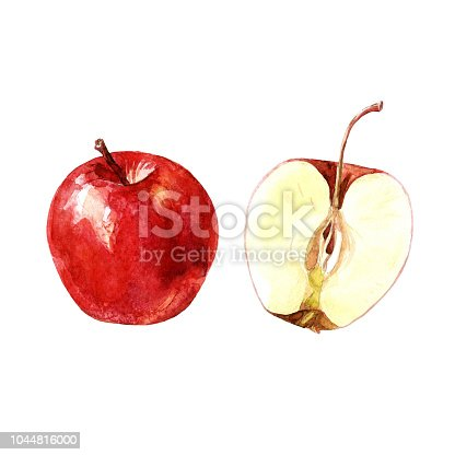 istock Red Apple and Apple cut, watercolor illustration. 1044816000