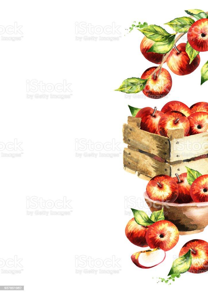 Rote Äpfel Und Grüne Blätter Hintergrund Aquarell Gezeichneten ...