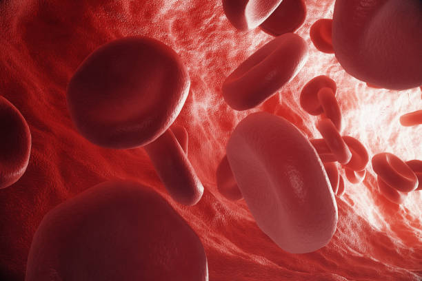 Red blood cells in vein or artery, flow inside inside a living organism, 3d rendering Red blood cells in vein or artery, flow inside inside a living organism. 3d rendering red blood cell stock illustrations