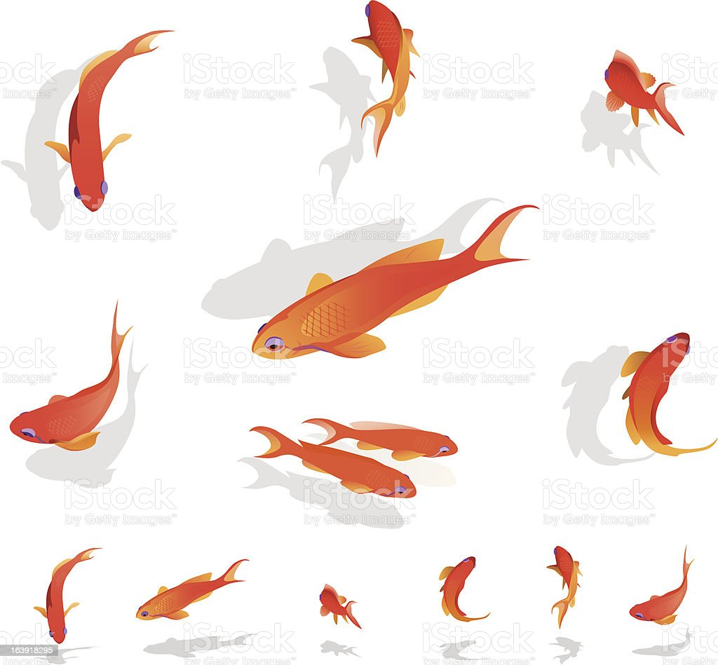 Red coral fishes royalty-free stock vector art