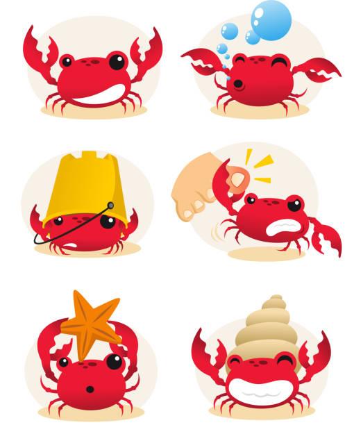 Krabben Maßnahmen set – Vektorgrafik