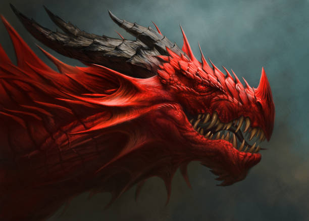 Red dragon head digital painting. Red dragon portrait. Digital painting. dragon stock illustrations