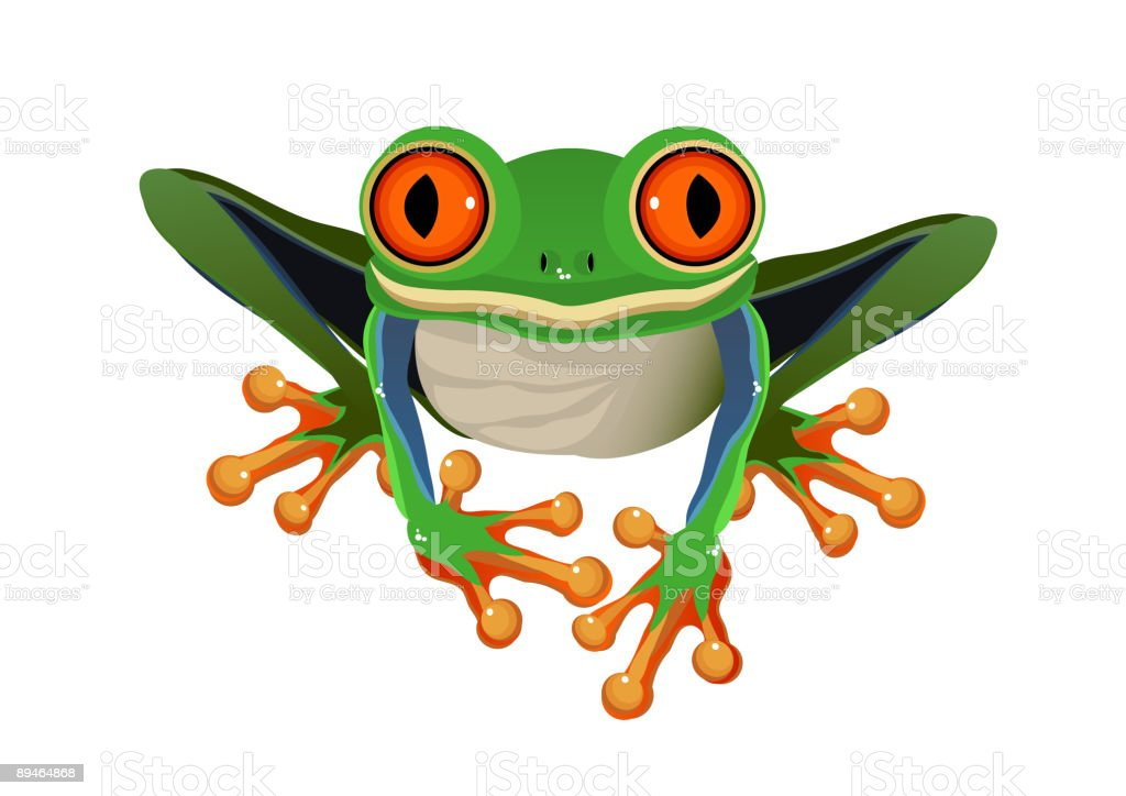 royalty free red eyed tree frog clip art vector images rh istockphoto com tree frog images clip art Funny Frog Clip Art