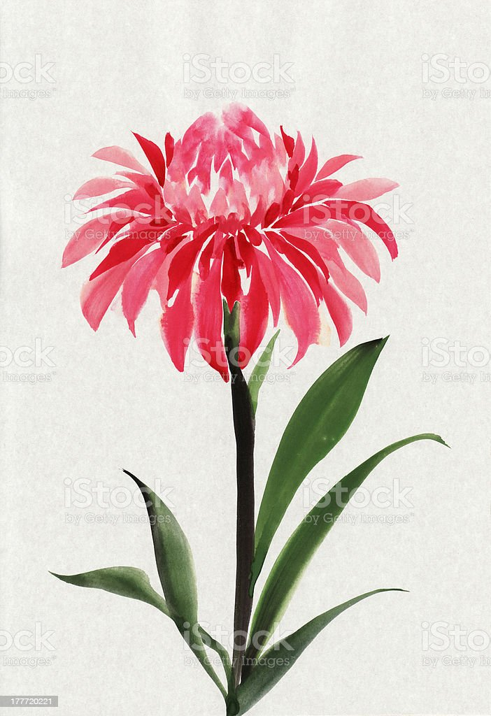Red flower royalty-free red flower stock vector art & more images of art