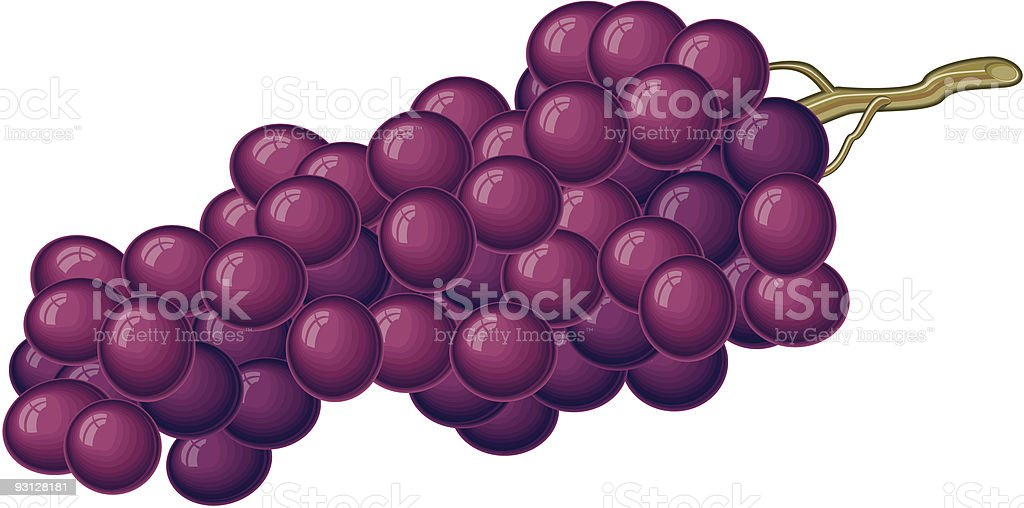 Red Grapes royalty-free stock vector art