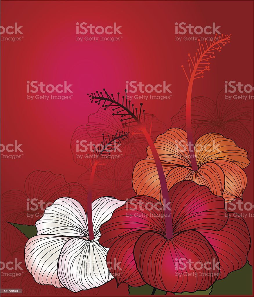 Red Hibiscus - Royalty-free Bush stock vector