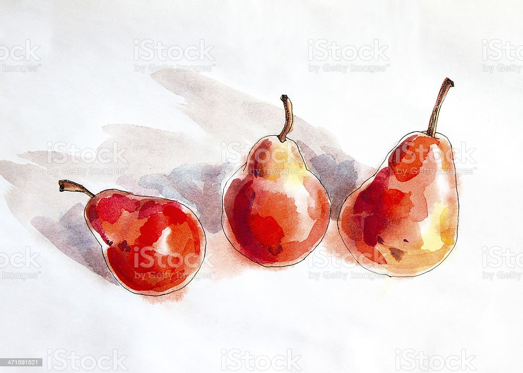 Red Pears - Watercolour painting royalty-free stock vector art
